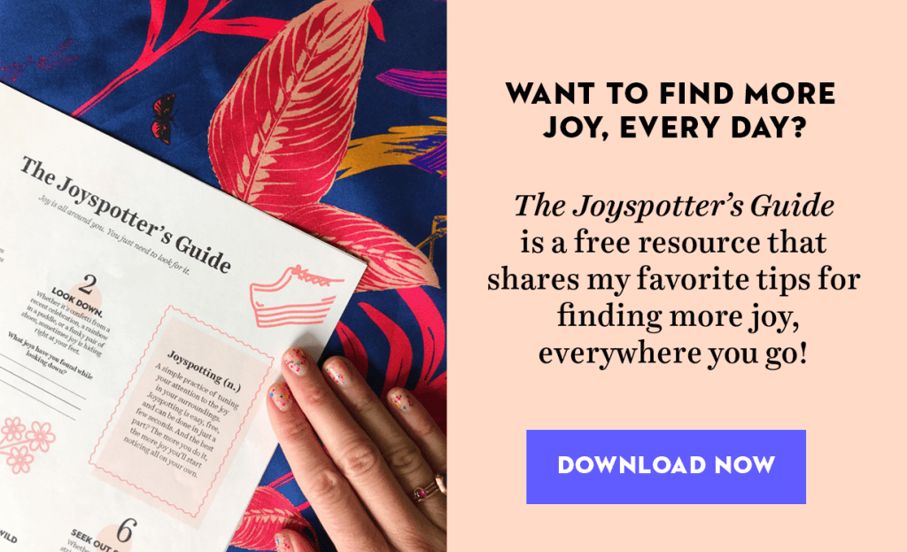 Description of the Joyspotters Guide - click to download