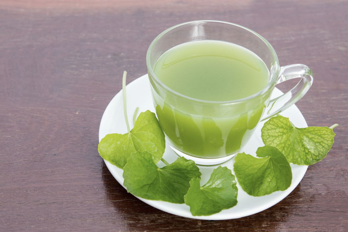 gotu kolas tea | BRAIN TEA: Teas To Drink That Boost Brain Health | brain tea | memory tea