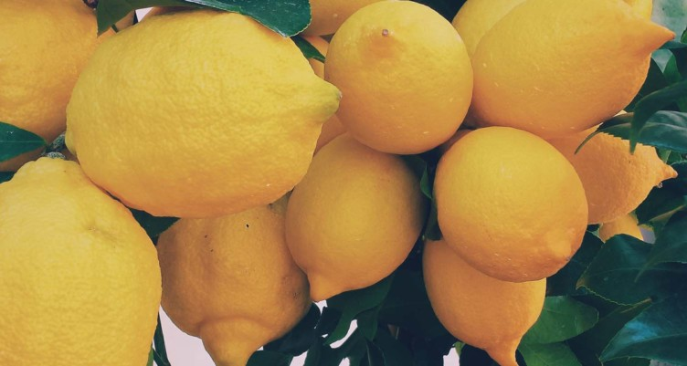 12 Best Vegetables and Fruit to Eat Right Now_lemons