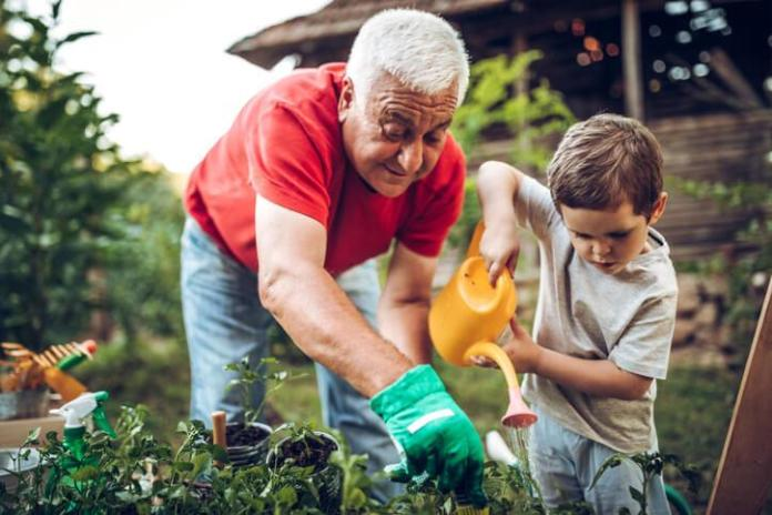 Though life expectancy in the U.S. is falling, active, healthy seniors—like this grandfather gardening with his grandson—can still enjoy long, fulfilling lives.