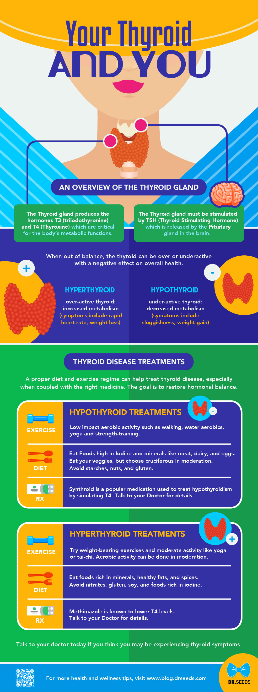 YOUR THYROID AND YOU: AN OVERVIEW OF THE THYROID GLAND [INFOGRAPHIC] What does the thyroid gland do? The Thyroid gland produces the hormones T3 (triiodothyronine) and T4 (Thyroxine) which are critical for the body's metabolic functions. The Thyroid gland must be stimulated by TSH (Thyroid Stimulating Hormone) which is released by the Pituitary gland in the brain. When out of balance, the thyroid can be over or underactive with a negative effect on overall health. HYPERTHYROID - over-active thyroid: increased metabolism (symptoms include rapid heart rate, weight loss). HYPOTHYROID - under-active thyroid: decreased metabolism (symptoms include sluggishness, weight gain). COMMON THYROID DISEASE TREATMENTS: A proper diet and exercise regime can help treat thyroid disease, especially when coupled with the right medicine. The goal is to restore hormonal balance. Read our infographic for details. - https://blog.drseeds.com/synthroid-levothyroxine-loss-appetite-news/